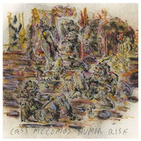 cass-mccombs-humor-risk